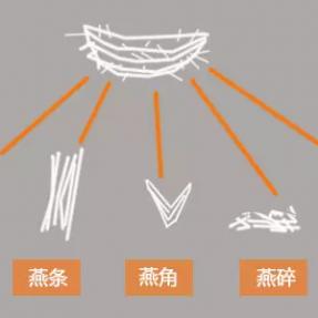科普下燕盏、燕条、燕角、燕饼、燕碎