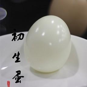 【身态圈】初生蛋