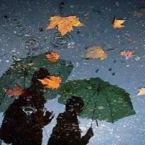 燕窝食谱 | 秋季,难得的养生时机